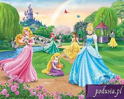 Fototapeta 3D Disney Princess